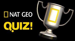 Nat Geo Quiz! Wild Life Trophy List Banner
