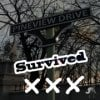 Survive Pineview Drive!