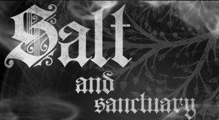 Salt and Sanctuary Trophy List Banner