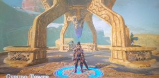 Gerudo Tower Guide