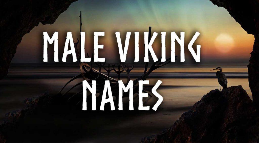 male viking names