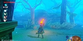 How To Get Through The Lost Woods
