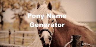 Pony Name Generator